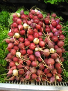 Radishes - root vegetables grow in the ground and are, intuitively, very grounding.